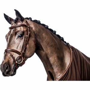 Eco curved bridle