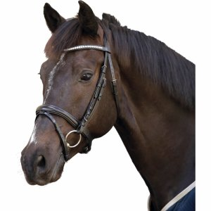Bridle with flash noseband, stones