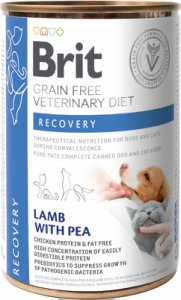Veterinary Diets Dog + Cat Can Recovery