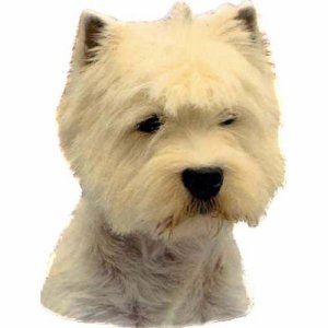 West Highland Terrier sticker