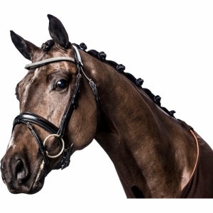 ERGO BRIDLE W/ CRYSTAL BROWBAND