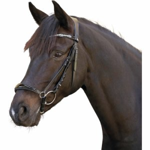 ERGO bridle with drop noseband, patent