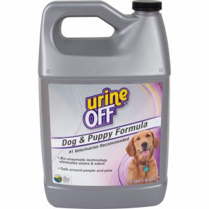 Urine off, Intl Dog