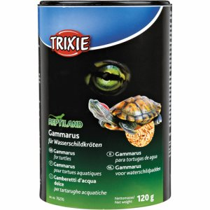 Gammarus-Water-Turtle Food