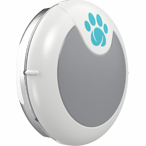 Dog Animo Behavioral Monitor