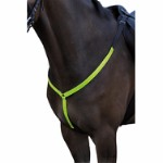 B'Seen breastplate pony/cob