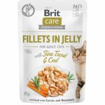 Care Cat Fillets in Jelly w/Trout + Cod