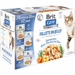 Care Cat Flavour box Fillet in Jelly