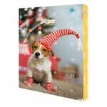 Advent calendar for dogs, 24 × 37 × 3.5