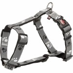 Silver Reflect H-harness