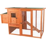 Chicken Coop with Enclosure