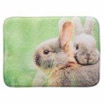 Lying mat for rabbits, 39 × 29 cm