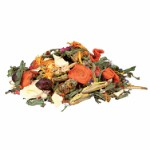 Natural Food Mixture for Bearded Dragons